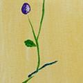 Purple Buds by Jamie Frier