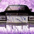Purple Cadillac by Julie Niemela