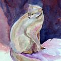 Purple Cat by Susan Kubes
