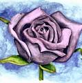 Purple Rose by Robert Morin
