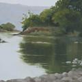Quiet Reflection by Mandar Marathe