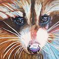Raccoon by Henny Dagenais