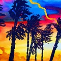 Rainbow Palms In Florida by Lil Taylor