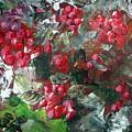 Red Berries by Saga Sabin