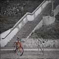 Red Bicycle by Kevin Bergen