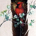 Red Cardinal by Theresa Jefferson