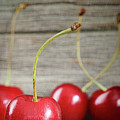 Red Cherries On Barn Wood by Sandra Cunningham