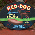 Red Dog Sweet Potatoes by Racquel Morgan