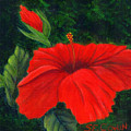 Red Hibiscus by SueEllen Cowan