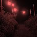 Red Night by John  Bichler