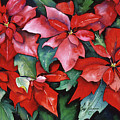Red Poinsettias by Leah Wiedemer