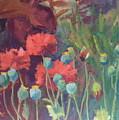Red Poppy Pods by Sylvia Carlton
