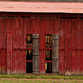 Red Tobacco Barn by Douglas Barnett