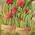 Red Tulips by Andrea Birdsey Kelly