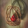 Redbird by Randy Burns