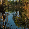 Reflecting Pond by Paul Mangold