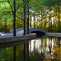 Reflecting Pool Roosevelt Park by Bill Cannon