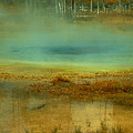 Reflection by Alex Nakhshon
