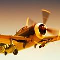 Republic P-47 Thunderbolt 2011 Chino Air Show by Gus McCrea