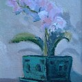 Retirement Orchid...sold by Bryan Alexander