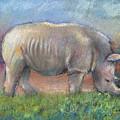 Rhino by Arline Wagner
