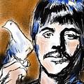 Ringo by Russell Pierce