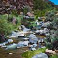 Rio Hondo Arroyo  by Charles Muhle