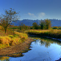 River Bend by David Patterson