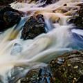 River Dance by Neil Shapiro