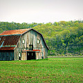 Riverbottom Barn In Spring by Cricket Hackmann