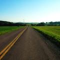 Road Weary by Ross Powell