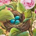Robin's Nest by Joni McPherson