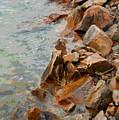 Rocky Shoreline by Suzanne Gaff