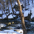 Rocky Stream by James and Vickie Rankin