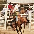 Rodeo Cowboy Riding A Wild Horse by Mark Hendrickson