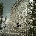 Roller Coaster by Sara Stevenson