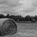 Rolls Of Hay by Southern Photo