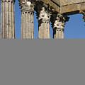 Roman Columns by Jan Kapoor