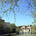 Rome's River by Munir Alawi