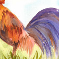 Rooster 2 by Ruth Bevan