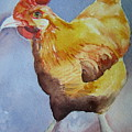 Rooster by Pat Vickers