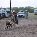 Roping Event 3 by Wendell Baggett