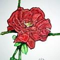 Rose Study No 1 by Edward Ruth