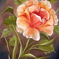 Rose Tropicana by David G Paul
