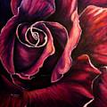 Rose Violet by Lyn Deutsch