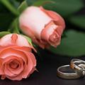 Roses And Rings by Stefan Nielsen