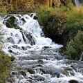 Roughlock Falls by Rich Stedman