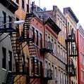 Row Houses by Serina Wells