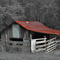 Rural Red - Red Roof Barn Rustic Country Rural by Jon Holiday