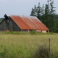 Rusty Roofed Barn    Washington State by Laurie Kidd